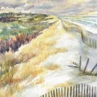 Dune-fence