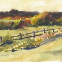 Fall-Pasture