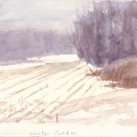 Winter-Field