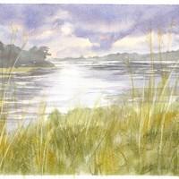 Stormy-Marsh